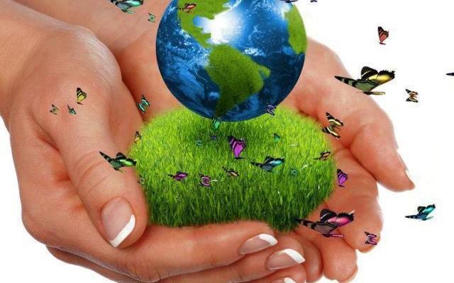 écologie main terre projet annuel